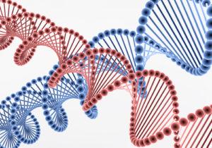 9bd2146df41e2dc116a91a99205dfa60 猫アレルギーって遺伝なの!?原因、症状、対策まとめ!