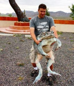 a8196883d03f2ea6627f7a4445f9f01a-300x220 世界一大きい「カエル」は?その驚きの体長、値段とは?