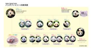 548cac65e5d01c4f339bfb1f53d9d37c-300x225 「上野」「和歌山」のパンダの違いとは?