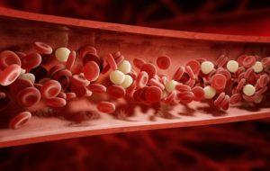 52233c17103ce6639c77a40452778814-300x190 人間の「血の量」は何L?献血、致死量はどのくらい?